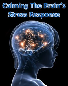 scientific evidence for tapping EFT Calm the stress response